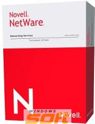 Купить Novell NetWare NFS Gateway for NetWare 6.5 Single Server 1-Year Standard Maintenance 877-002354 по доступной цене