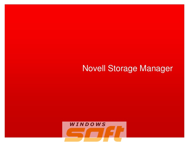 Купить Novell Storage Manager 4 1-User License + 1-Year Standard Maintenance 879-002248 по доступной цене